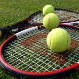 Sportradar и итальянская федерация тенниса будут бороться с договорняками