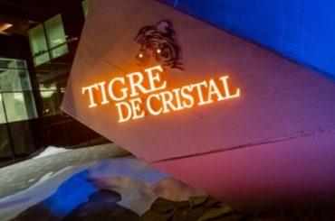 Директором Tigre de Cristal стал Стилианос Цифетакис